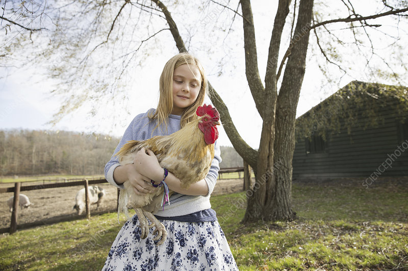 A girl holding a large chicken