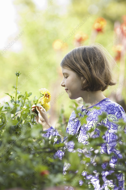 A young girl picking flowers in a garden