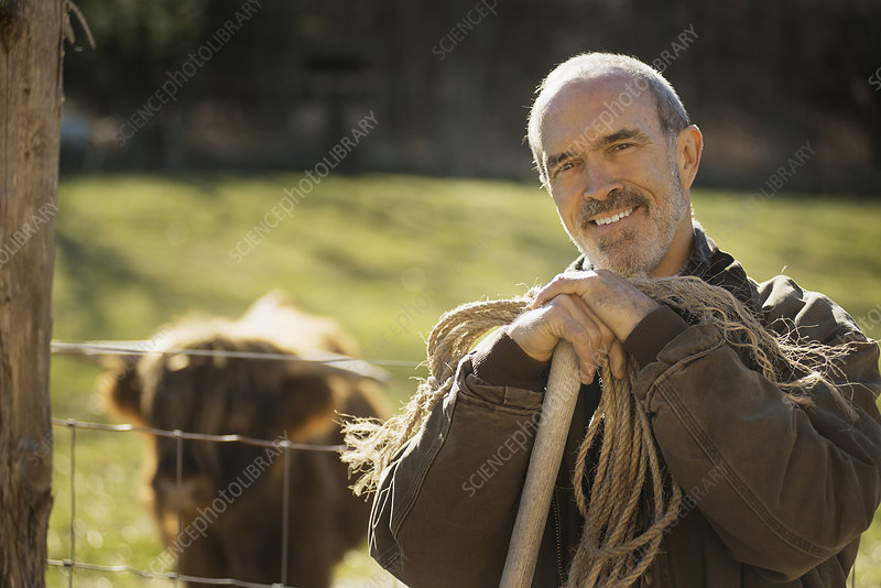 Man with coil of rope with highland cow