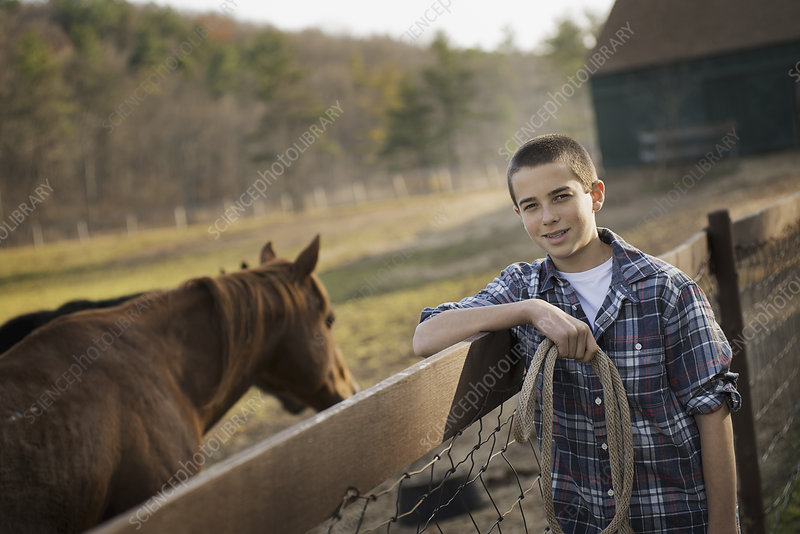 A boy standing by a bay horse.