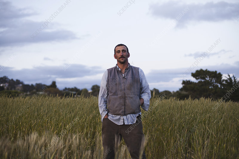 A man standing by a cereal crop