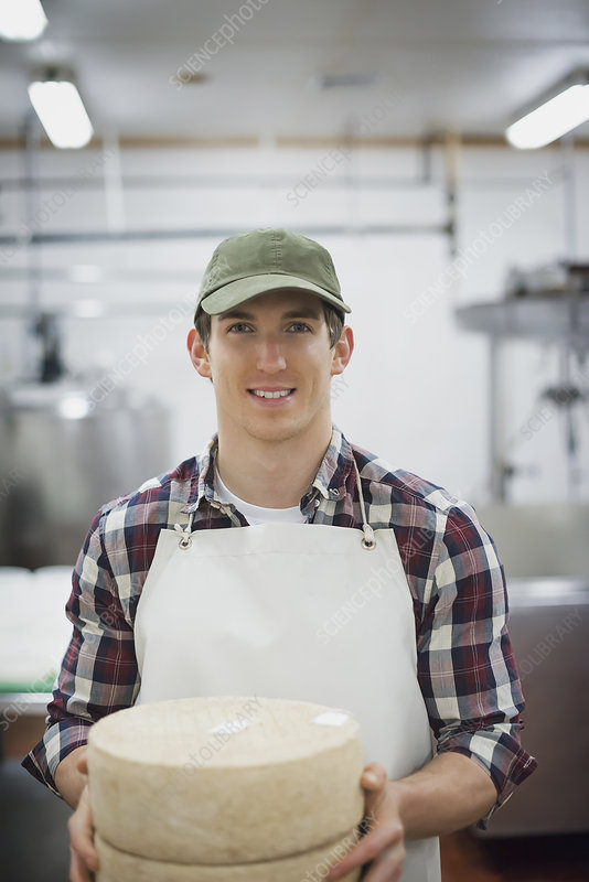 Wheels of cheese maturing on shelves