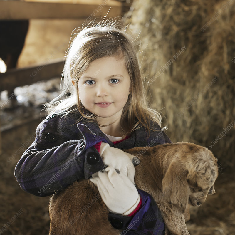 A child holding and stroking baby goat.