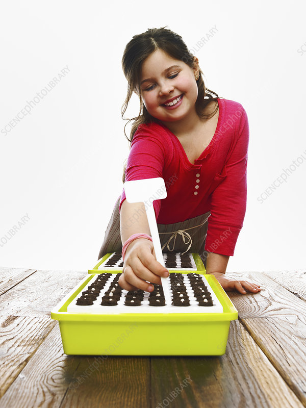 A young girl planting seeds in seed tray