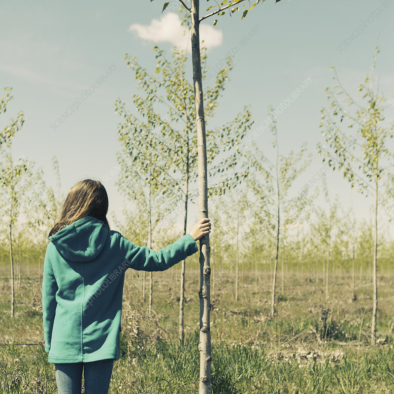 A girl standing next to a poplar tree.