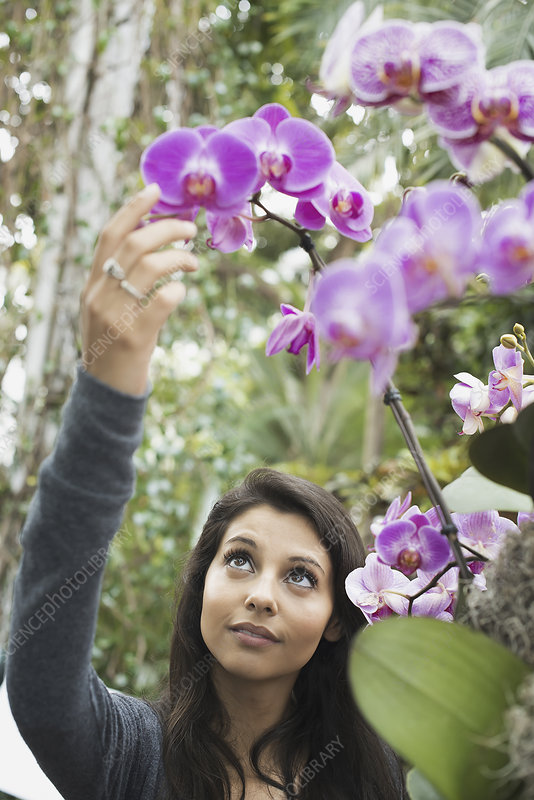 A young woman reaching up to orchid