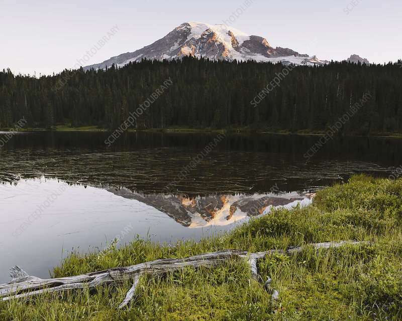 Mount Rainier view from Reflection Lakes