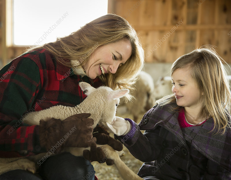 A woman and child stroking a small lamb