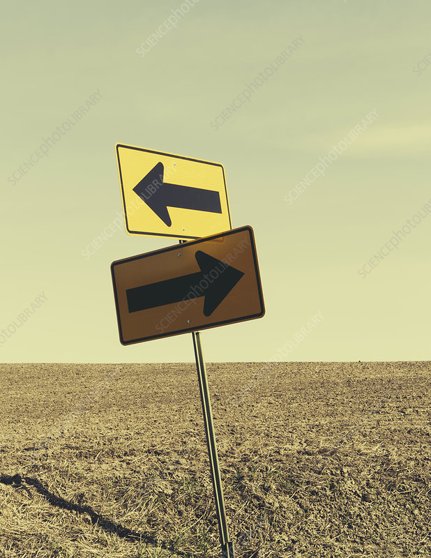 Directional arrow sign in farmland