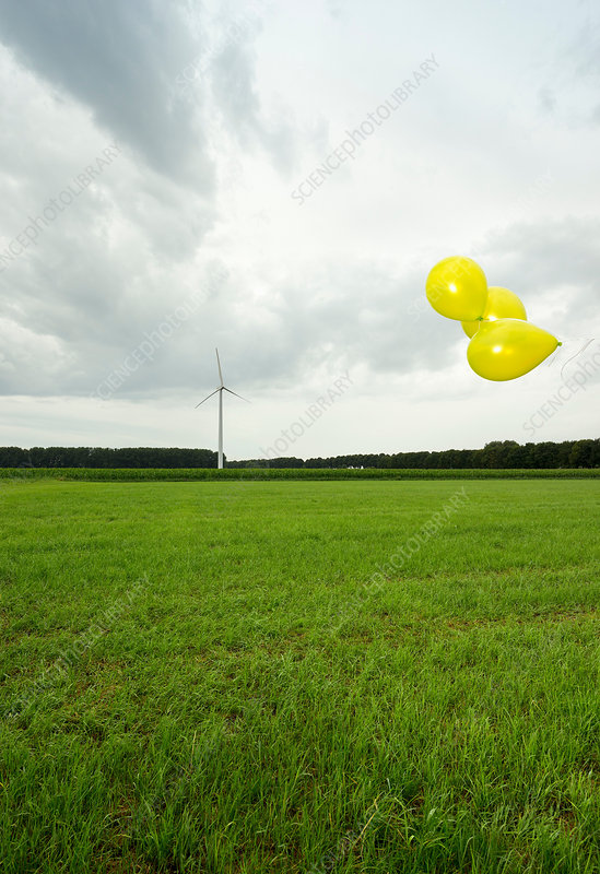 Balloons floating over green field
