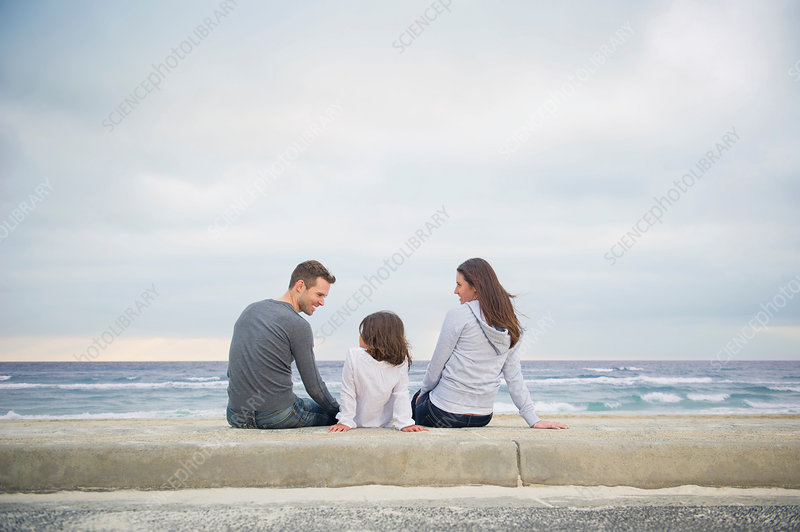 Rear view of family sitting on beach