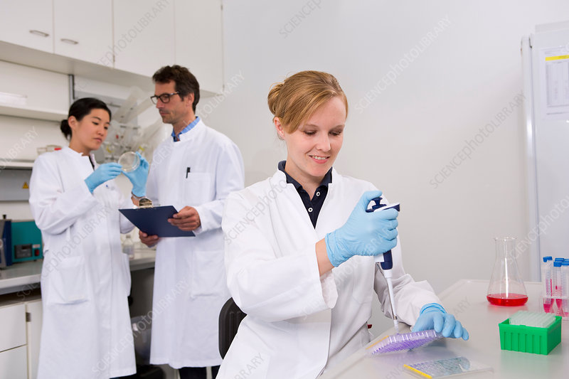 Scientists pipetting solution