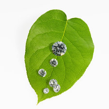 Leaf with vein pattern, gems sparkling