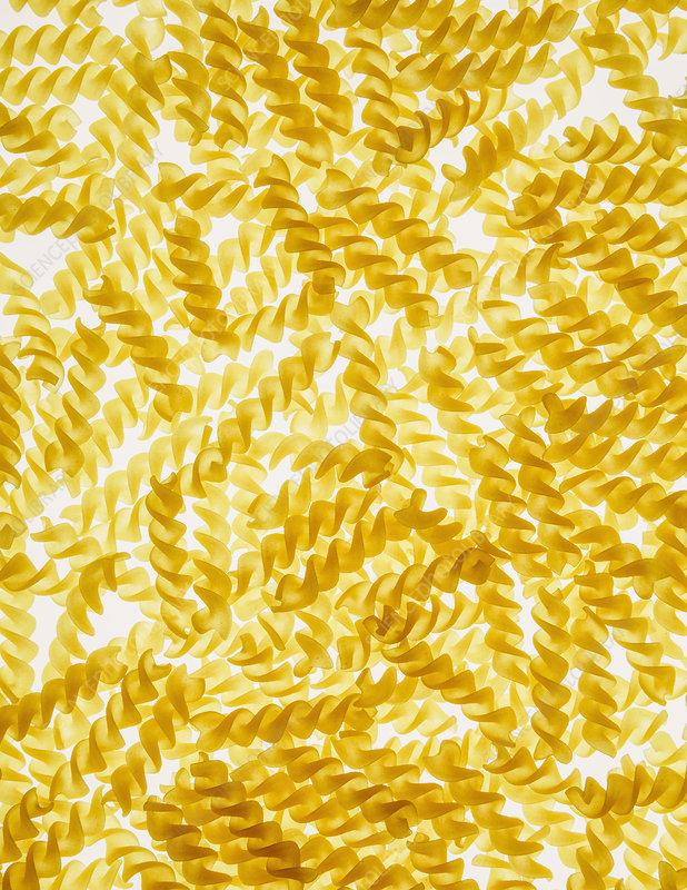 Organic gluten free fusilli pasta spirals