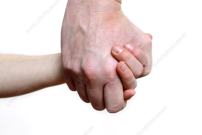 Child and adult holding hands