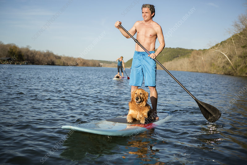 Man on a paddleboard with a dog