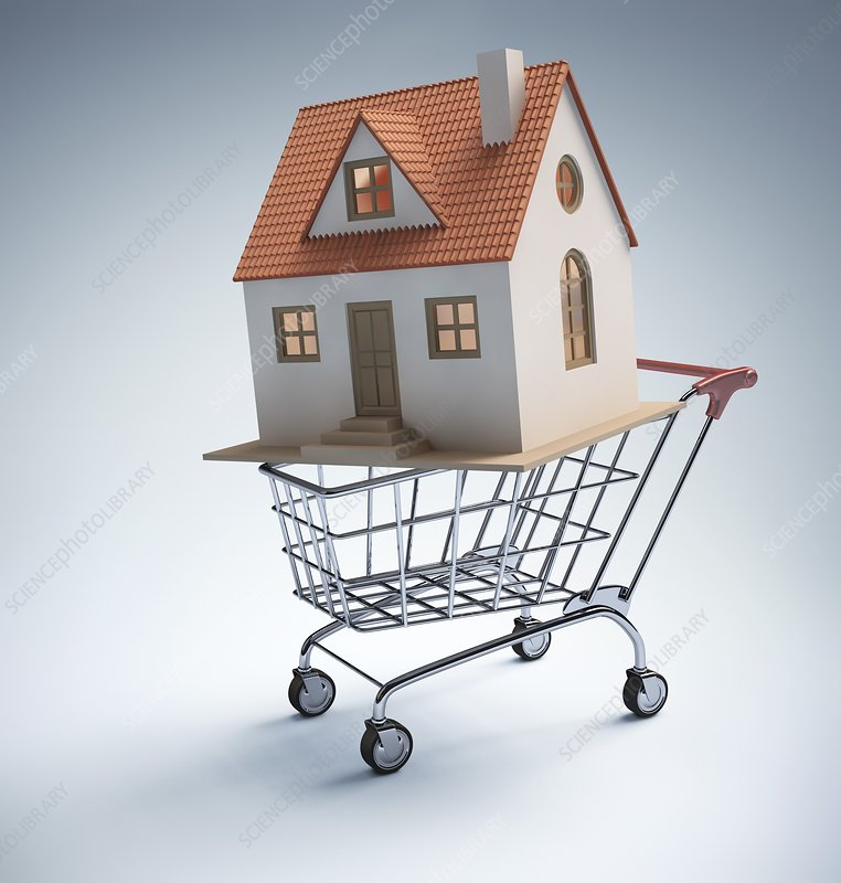 House in shopping trolley, artwork