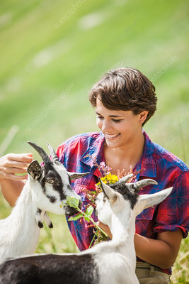 Young woman feeding kid goats