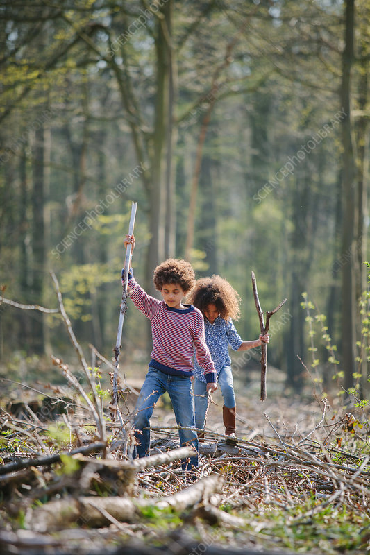 Siblings exploring together in woods