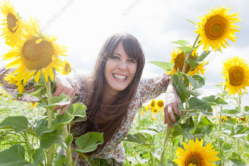 Mid adult woman in field of sunflowers