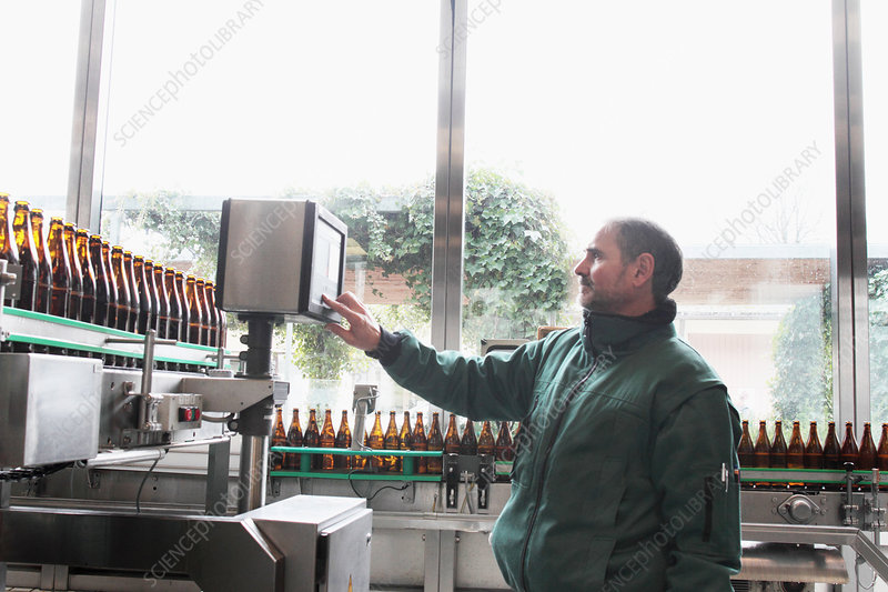 Brewery worker operating bottling machine