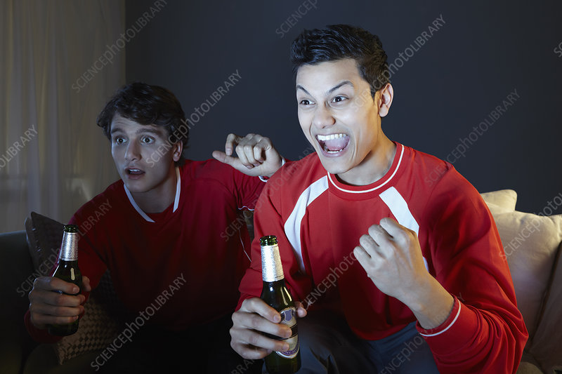 Men watching sport on tv