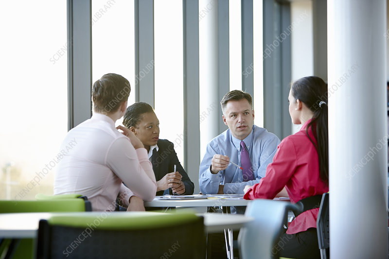 Business colleagues in meeting