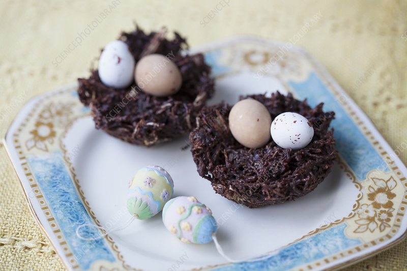 Chocolate easter eggs in chocolate nests