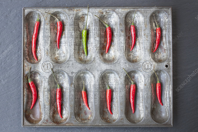 Red chillies and one green chilli