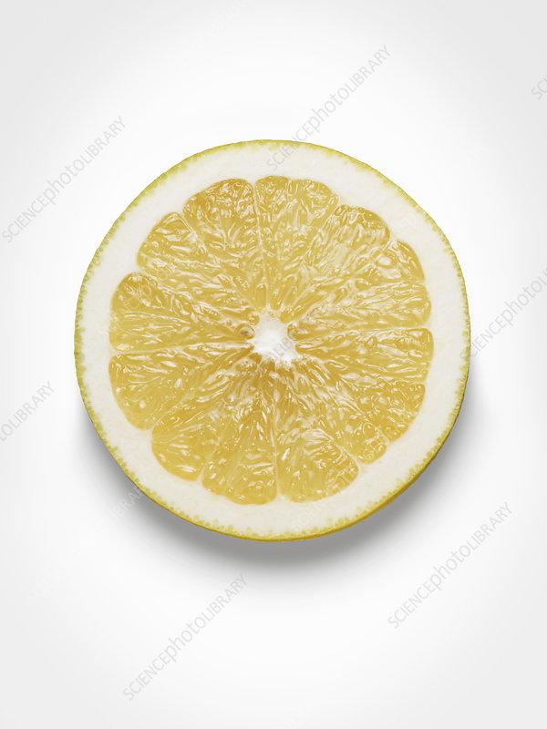 Still life of grapefruit sliced in half
