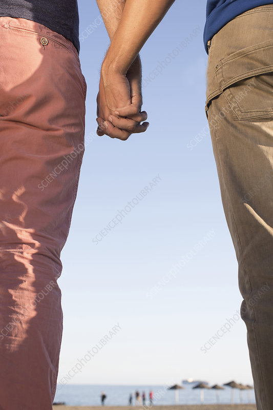 Male couple holding hands on beach