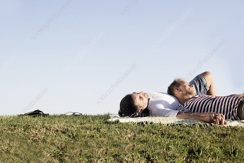 Male couple lying on picnic blanket