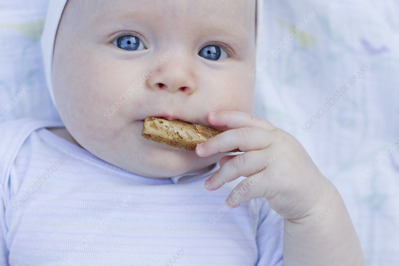 Baby girl eating cracker