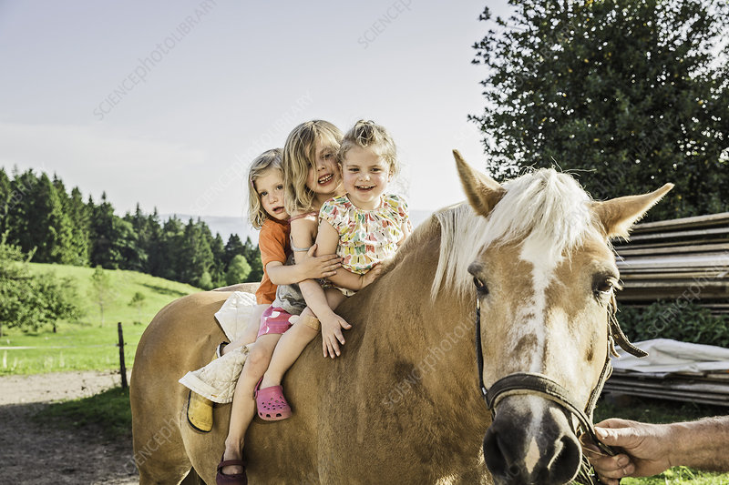Three young girls on palomino horse
