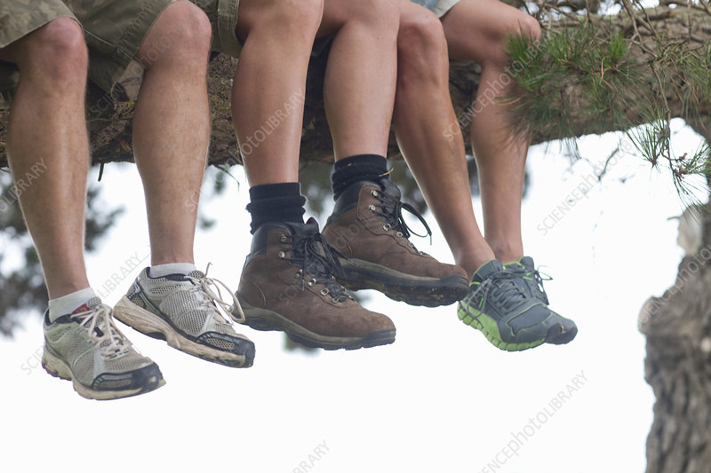 Legs of three male hikers