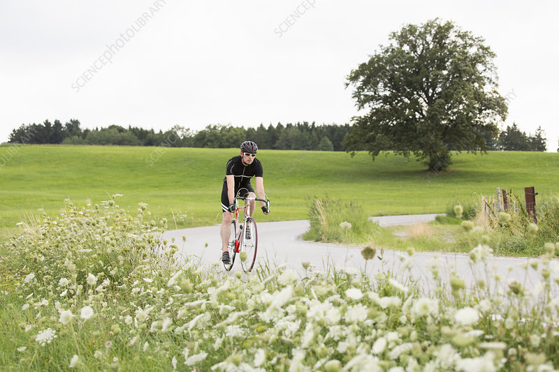 Mature male cyclist on country road
