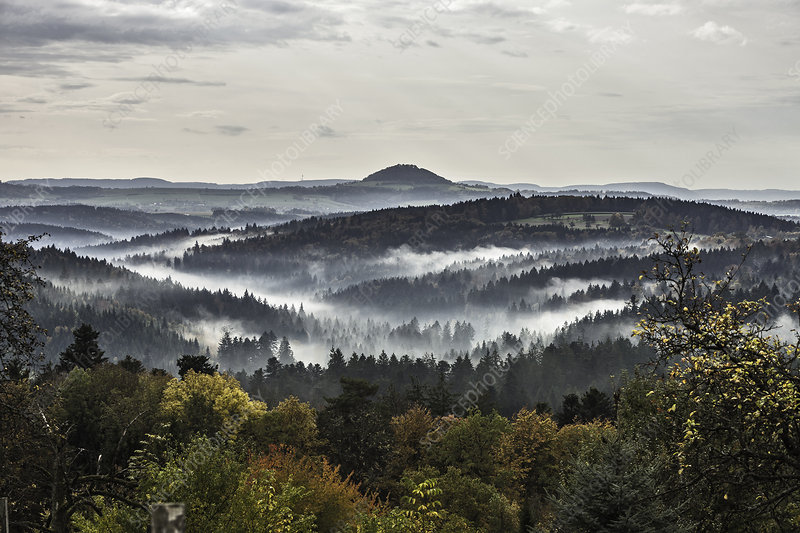 Forests and morning mist, Germany