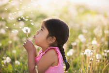 A child with a dandelion seedhead clock