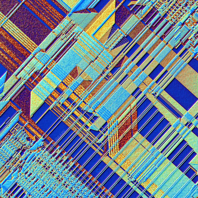 Microchip, light micrograph