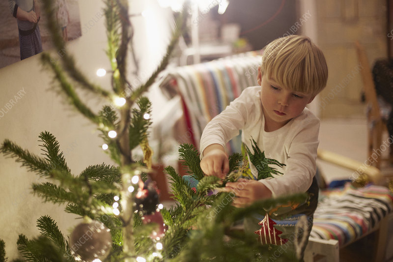 Young boy decorating tree at christmas