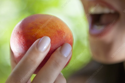 Woman holding peach to mouth