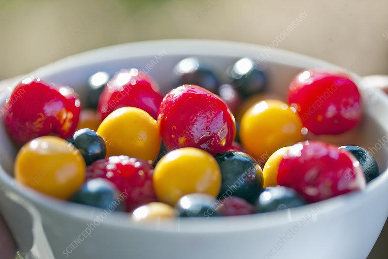 Bowl of mixed berries