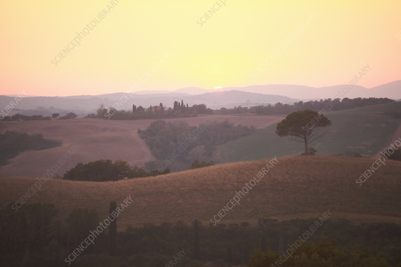 Rural landscape at sunset, Tuscany, Italy
