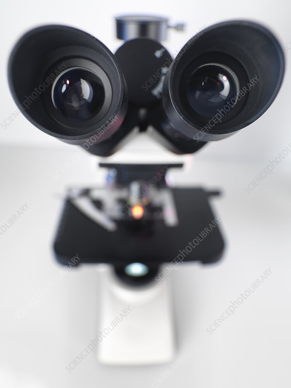View down a compound microscope