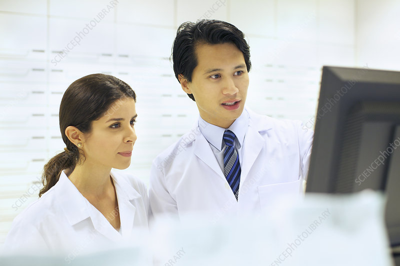 Pharmacists working on computer