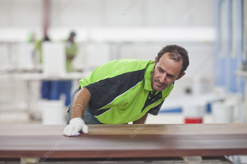 Carpenter checking quality of wood