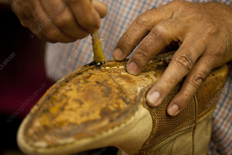 Cobbler applying glue on sole of boot