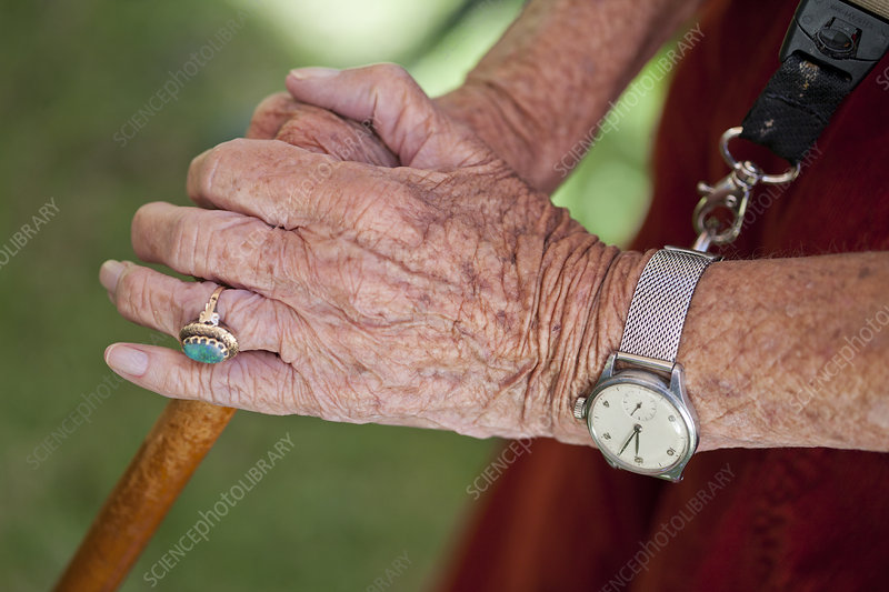 Senior woman's hands with walking stick
