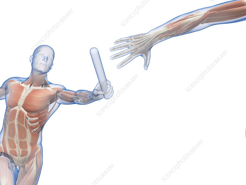 Person passing relay baton, artwork