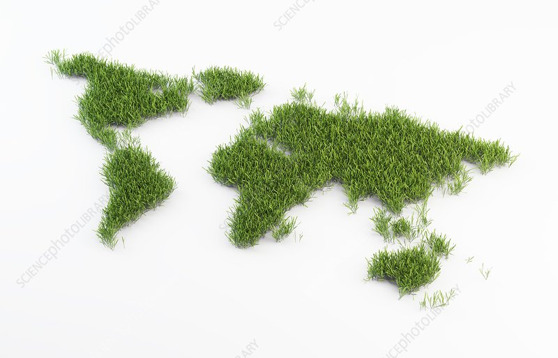 World map made out of grass, artwork